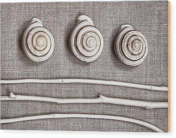 Shells And Sticks Wood Print by Carol Leigh
