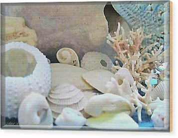 Shells In Pastels Wood Print by Danielle  Parent