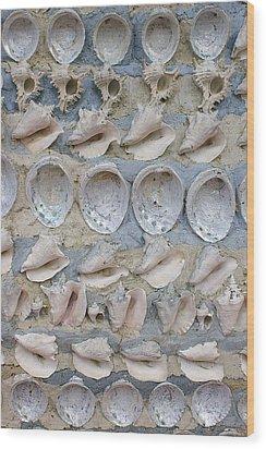 Shells Wood Print by Randy Pollard