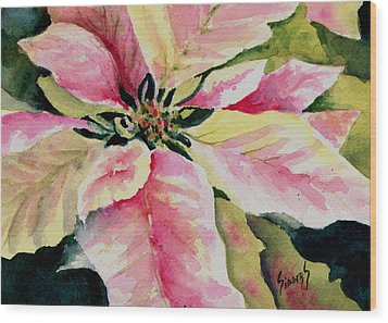 Shelly's Poinsettia Wood Print by Sam Sidders