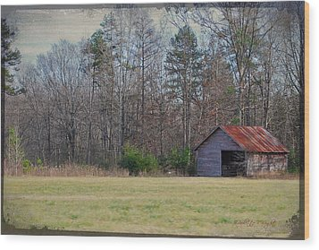 Shelter In The Midle Of Nowhere Wood Print by Paulette B Wright