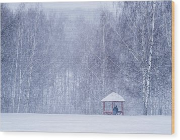 Shelter In The Storm - Featured 3 Wood Print by Alexander Senin