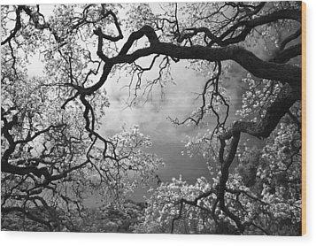 Sheltering Sky Wood Print