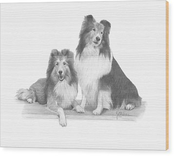 Shelties Wood Print
