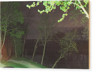 Shenandoah Valley - 011325 Wood Print by DC Photographer