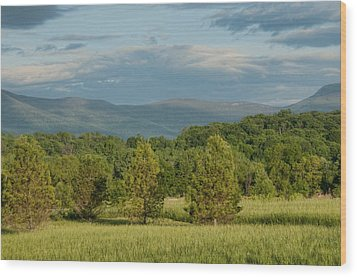 Shenandoah Valley May View Wood Print by Lara Ellis