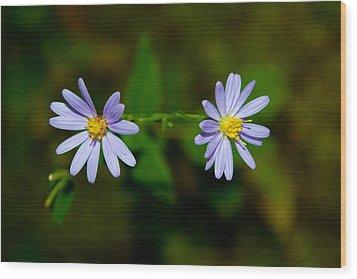 Sherando Lake Wildflowers Wood Print