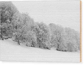 Sherman's Wood Wood Print by Anne Gilbert