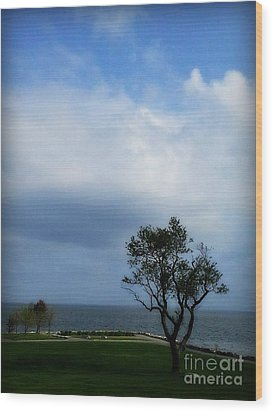 Wood Print featuring the photograph Sherwood Island by Kristine Nora