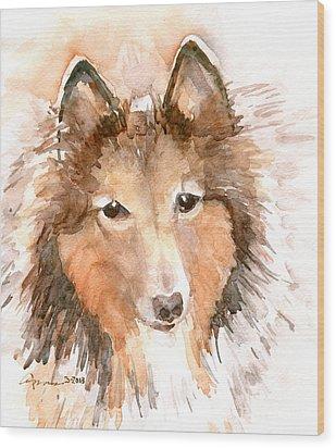 Shetland Sheepdog Wood Print by Claudia Hafner