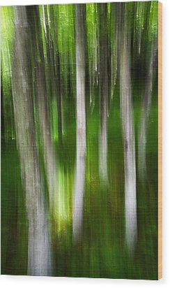 Shifted Perspective Wood Print by Serge Skiba