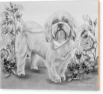 Shih Tzu In Black And White Wood Print