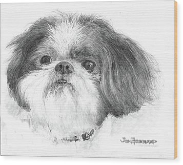 Shih-tzu Wood Print by Jim Hubbard