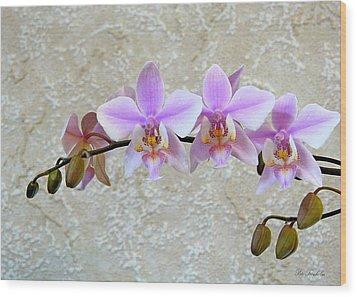 Shilleriana Wood Print