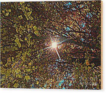 Wood Print featuring the photograph Shine On Me by Geri Glavis