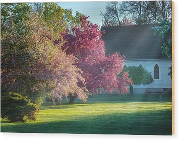 Shine The Light On Me Wood Print by Bill Wakeley