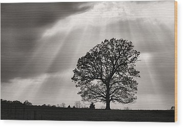 Shining Down Wood Print by JC Findley
