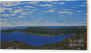 Ship Harbour From Sugarloaf Hill Wood Print by Barbara Griffin