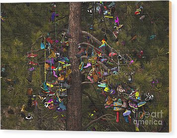 Wood Print featuring the photograph Shoe Shrine by Sandi Mikuse