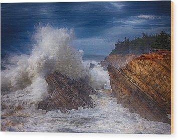 Shore Acre Storm Wood Print by Darren  White