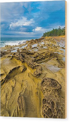 Shore Acres Sandstone Wood Print by Robert Bynum