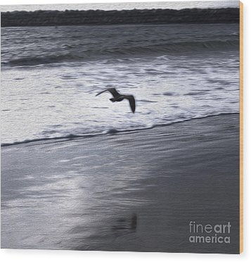 Shore Bird -02 Wood Print by Gregory Dyer