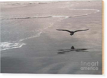 Shore Bird Wood Print by Gregory Dyer