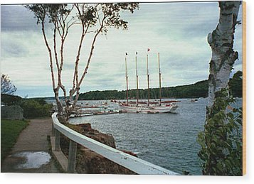 Shore Path In Bar Harbor Maine Wood Print