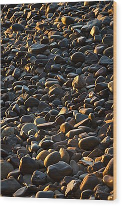 Shore Stones Wood Print by Steve Gadomski