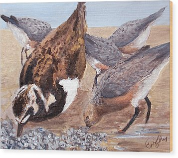 Shorebirds Wood Print