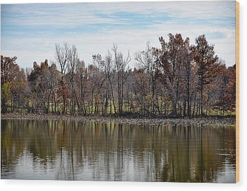Wood Print featuring the photograph Shoreline 2 by Greg Jackson