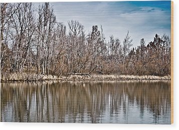 Wood Print featuring the photograph Shoreline 5a by Greg Jackson