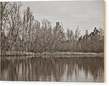 Wood Print featuring the photograph Shoreline 5b by Greg Jackson