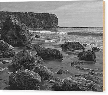 Shoreline Near Abalone Cove Wood Print by Ron Regalado