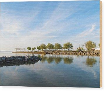 Shoreline Park Wood Print