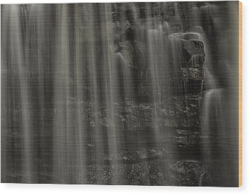 Shower Curtain Drapes Bear Roar Wood Print by Mark Serfass
