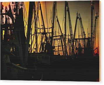 Shrimp Marina Wood Print