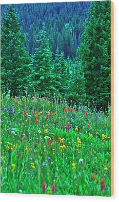 Wood Print featuring the photograph Shrine Pass Wildflowers by Jeremy Rhoades