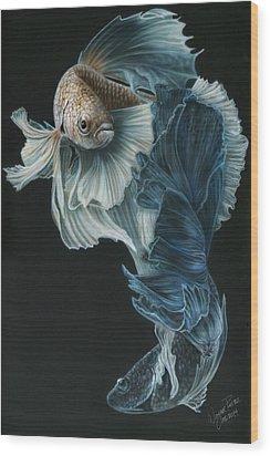 Siamese Fighting Fish Three Wood Print