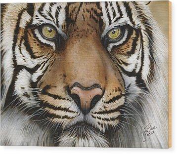 Siberian Tiger Closeup Wood Print