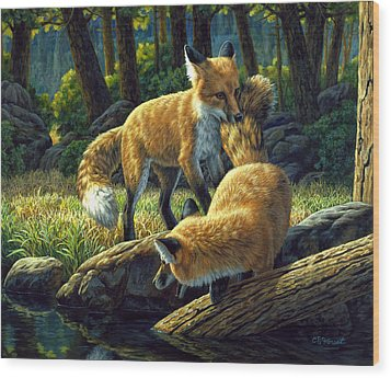 Red Foxes - Sibling Rivalry Wood Print by Crista Forest