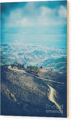 Wood Print featuring the photograph Sicilian Land After Fire by Silvia Ganora