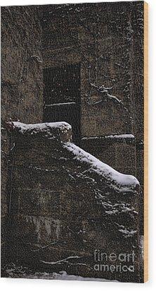 Side Door Wood Print by Jasna Buncic