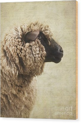 Side Face Of A Sheep Wood Print by Priska Wettstein