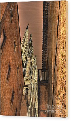 Wood Print featuring the photograph Side Of Gaudi by Erhan OZBIYIK