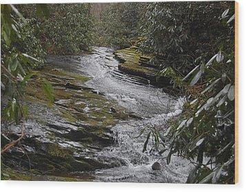 Sideways Creek Wood Print by Joyce Brooks