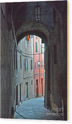 Siena Italy Wood Print by Amy Fearn