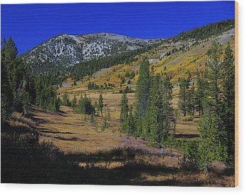 Wood Print featuring the photograph Sierra Fall  by Sean Sarsfield