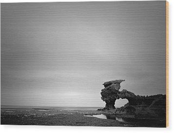 Sierra Nevada Rocks Wood Print by Mihai Florea