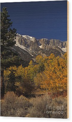 Sierra Nevadas In Autumn Wood Print by Ron Sanford